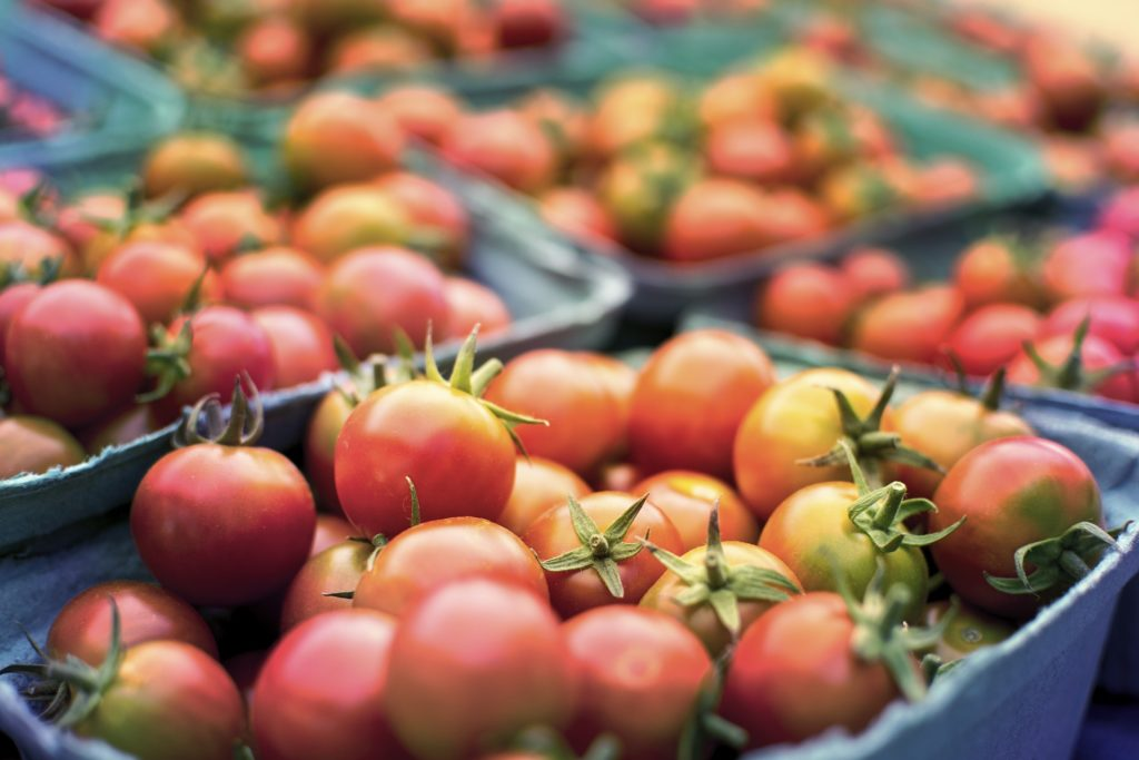 close-up photo of small containers filled with tomatoes